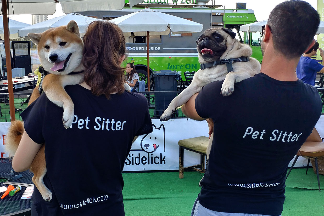 Why-hire-a-pet-sitter