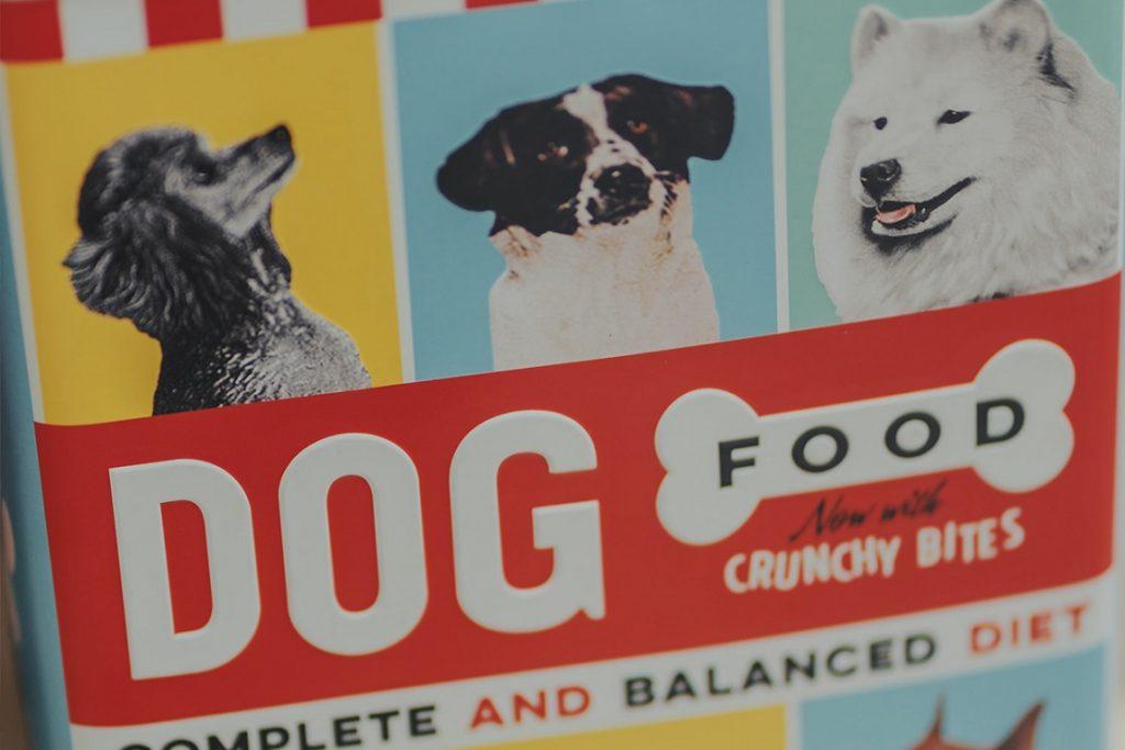 dog food diet